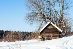Old abandoned wooden hut near forest in winter. Old abandoned wooden hut near forest in sunny winter day in little village in Smolensk region of Russia Royalty Free Stock Photography