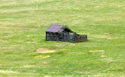 Old Abandoned Wooden Shack. In a green grass field Royalty Free Stock Photography