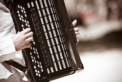 Old Accordion Stock Images