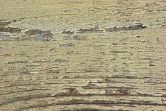 Old adged wood background. Old wethered wood wall background Stock Image