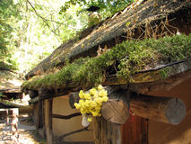 The old adobe house with a thatched roof Stock Images