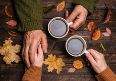 Old age concept. Old people holding hands. Closeup. The senior p. Eople hand holding a cup of coffee on wooden rustic table covered with autumn leaves Stock Photos
