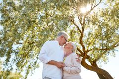 Happy senior couple kissing at summer park. Old age, love and people concept - happy senior couple nuzzling at summer park Royalty Free Stock Images