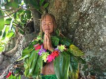 Old aged Pacific Islander man praying under a rain forest tree. An old aged Pacific Islander man praying under a rain forest tree in Rarotonga, Cook Islands royalty free stock image