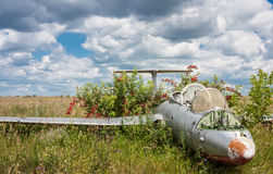 Old aircraft in elderberry bush, Aero L-29 Delfin Maya czechoslovakian military jet trainer. On an abandoned airfield in Ukraine royalty free stock photos