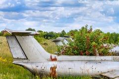 Old aircrafts in elderberry bush. Aero L-29 Delfin Maya czechoslovakian military jet trainer on an abandoned airfield in Ukraine Stock Photo
