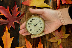 Old alarm clock between autumn leaves Stock Image