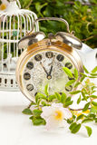 Old alarm-clock with flowers Stock Photos