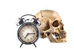 Old Alarm clock and  human skull on white background Royalty Free Stock Photo