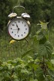 Old alarm clock scarecrow Royalty Free Stock Images