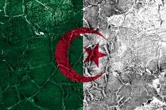 Old Algeria grunge background flag.  royalty free stock photos