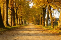 Old alley with autumn colors Royalty Free Stock Photos