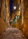 Old alley in Florence. Oil painting on canvas depicting a narrow alley at night in Florence, Tuscany, Italy Stock Photography