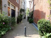 Old alley. An old alley with old houses and green plants in europe Stock Image