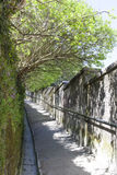 Old alley with mossy stone wall Stock Photos