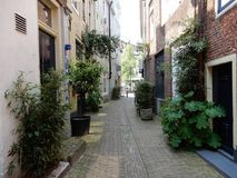 Old alley. An old alley with old houses in europe Royalty Free Stock Photography