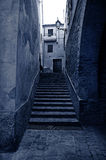 Old alley with stairs. Old town alley with stone floor, stairs and street lamp, blue tone Stock Photos