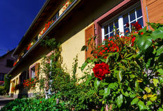 Old alsacien house in small village Royalty Free Stock Photos