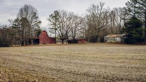 Old American barns. In winter stock images