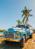 Old american car standing under palm tree Royalty Free Stock Image
