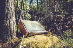 Old analog television in forest Stock Image