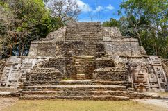 Old ancient stone Mayan pre-columbian civilization pyramid with. Carved face and ornament hidden in the forest, Lamanai archeological site, Orange Walk District Stock Image