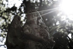 Old angel statue. In a garden with sun beam Stock Image