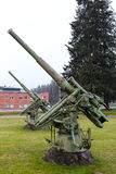 Old antiaircraft guns Royalty Free Stock Photos