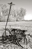 Old antique corn planter (black and white Stock Images