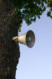 Old antique loudspeaker. On the tree, sky background Stock Image