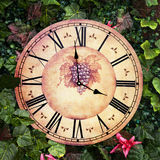 Old antique wall clock with grape picture on them Stock Images