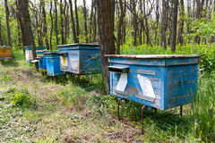 Old apiary Stock Photo