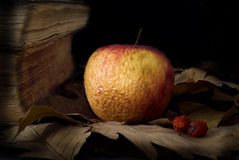 Old apple. And antique books Royalty Free Stock Photo