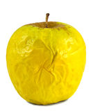Old apple Royalty Free Stock Image