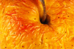 Old apple, wrinkled skin close-up. Royalty Free Stock Photography