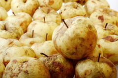 Old apples Royalty Free Stock Image