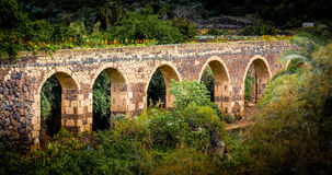 Old aquaduct. Old spanisch aquaduct with flowers on it Royalty Free Stock Photography