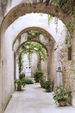 Old arcade at the Castle. Old arcade, corridor and flowers in the pots Stock Photography