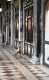 Old arcade in Venice. With a lonely table Royalty Free Stock Image