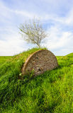 Old arched masonry brick wall in a green andscape Stock Image