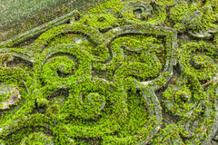 Old architecture. Fresh moss on the architecture in temple Royalty Free Stock Photography