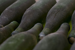 Old archive wine bottles Stock Photography