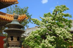 Old asian temple in garden Stock Photography