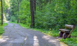 The old asphalt path winds through the forest. Clear Sunny day, in the woods on an abandoned path is a bench Royalty Free Stock Photography