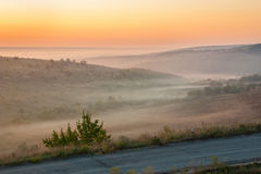 Old asphalt road in the countryside into fog at sunrise in summer Royalty Free Stock Image