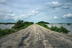 Old asphalt road leading through swamps with cloudy sky royalty free stock photo