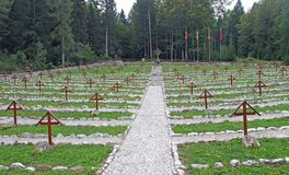 Old Austrian Cemetery from World War I in the middle of the fore Royalty Free Stock Photos