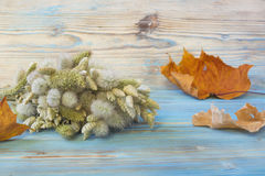 Old autumn maple leaf, bouquet of Lagurus ovatus and Briza Poaceae on the blue wooden table. Vintage style background. Herbarium. Royalty Free Stock Photos