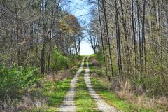 Scenic Country Backwoods Dirt and Gravel Road. An old backcountry dirt and gravel road winding through the countryside on a scenic route lined with trees under Royalty Free Stock Image