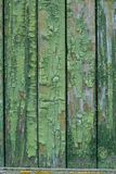 Old background with green paint Royalty Free Stock Image